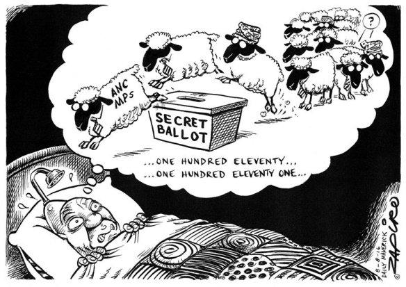 Bed Zuma Zapiro.jpg